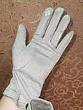 Замш с сенсором тонкий женские перчатки для работы на телефоне плоншете ANJELA стильные только оптом, фото 4