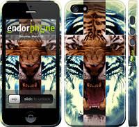 "Чехол на iPhone 5 Злой тигр ""866c-18"""