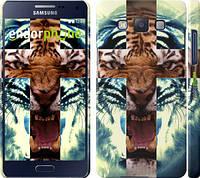 """Чехол на Samsung Galaxy A5 A500H Злой тигр """"866c-73"""""""