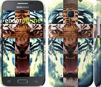 "Чехол на Samsung Galaxy Core Prime G360H Злой тигр ""866c-76"""