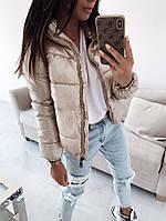 Женская стильная демисезонная куртка короткая с высоким воротником