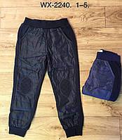 Спортивные штаны утепленные на мальчика оптом, F&D, в остатке 1 рр.