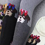 """МАХРОВЫЕ колготы  для детей, """"JuJube"""", РОСТОВКА . Колготки для детей на махре, фото 3"""