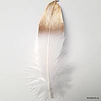 Перья декоративные, 16-18 см, Цвет: Белый с золотом (5 шт.)