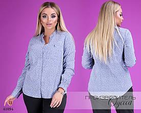 Блуза длинный рукав стойка принт коттон 48,50,52,54