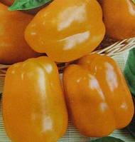 ШОРОК-ШАРИ / SHOROK-SHARI — перец сладкий, Hortus 10 грамм