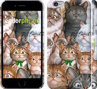"Чехол на iPhone 6 коты ""1653c-45"""