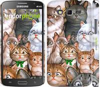 "Чехол на Samsung Galaxy Grand 2 G7102 коты ""1653c-41"""
