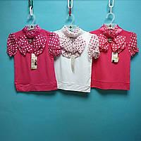 Блуза catherine на короткий рукав с бантом в горошек