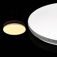 Светодиодный светильник Biom 18W 4500K без д/у DEL-R04-18