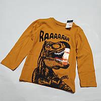 Реглан оранжевый Динозавр Primark (Англія)  р.92, 98, 104, 110, 116, 122