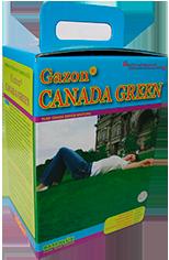 Газонная трава Канада Грин RASENLUX - 2 кг, фото 2