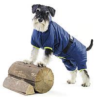 Дождевик для собаки RAIN № 8, ТМ Природа (длина спины: до 34,5см, обхват груди: 42-52см)