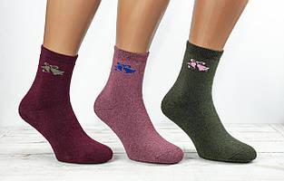 Термо шкарпетки жіночі шкарпетки махрові Житомир Люкс з малюнком дзвіночки розмір 36-40