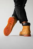 "Зимние ботинки Timberland Classic ""Коричневые"", фото 2"