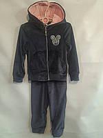 Спортивный велюровый костюм  #1920 для девочек. 4-7 лет (104-122 см). Синий. Оптом
