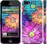 """Чехол на iPhone 5 разноцветные цветы 1 """"2271c-18"""""""
