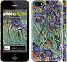 """Чехол на iPhone 5s Винсент Ван Гог. Ирисы """"161c-21"""""""