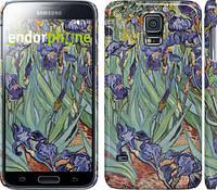 "Чехол на Samsung Galaxy S5 g900h Винсент Ван Гог. Ирисы ""161c-24"""