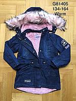 Джинсовая зимняя куртка для девочек оптом, Grace, 100% хлопок, 134-164 см, арт. G 81405, фото 1