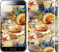 "Чехол на Samsung Galaxy S5 g900h Морские ракушки ""2244c-24"""