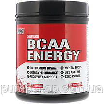 БЦАА Evlution Nutrition Energy BCAA 65 порц. (уцінка), фото 2
