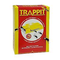 Средство от тараканов Ловушки тараканов Agrisense Trappit, 5 штук, фото 1