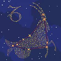 Картина по номерам. Звездный знак  Козерог  с краской металлик 50*50см
