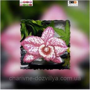 """Схема для вышивки бисером на подрамнике (холст) """"Розовая орхидея"""", фото 2"""