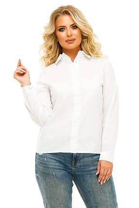 Рубашка 5611 белая, фото 2