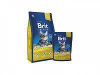 Сухой корм для котов с лососем  Brit Premium Cat Adult Salmon 8 кг