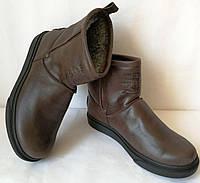 Мужские сапоги Levi's! Levi Strauss Winter угги кожаные UGG коричневая кожа, фото 1