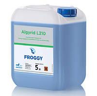 Химия для бассейнов Froggy Algyrid L210 20 л (21 кг) - Жидкий препарат для удаления водорослей.