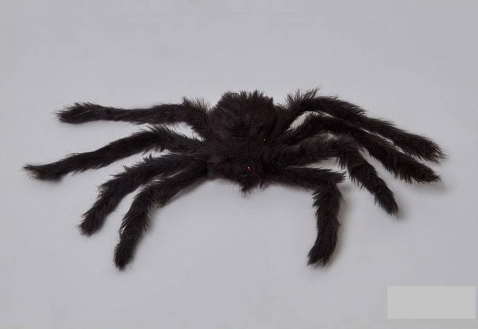 Паук черный 30см декор на Хэллоуин, фото 2