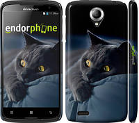 "Чехол на Lenovo S820 Дымчатый кот ""825c-52"""