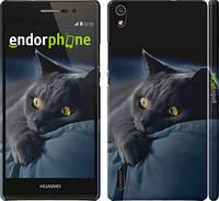 """Чехол на Huawei Ascend P7 Дымчатый кот """"825c-49"""""""