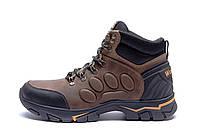 Мужские зимние кожаные ботинки Jack Wolfskin New Olive  (реплика), фото 1