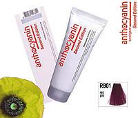 Биоламинирующий краситель Anthocyanin Second Edition RB01, черная вишня