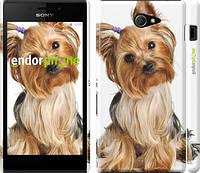 """Чехол на Sony Xperia M2 D2305 Йоркширский терьер с хвостиком """"930c-60"""""""