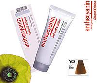 Биоламинирующий краситель Anthocyanin Second Edition Y03, мокко