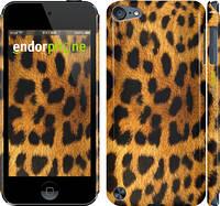 "Чехол на iPod Touch 5 Шкура леопарда ""238c-35"""