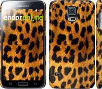"Чехол на Samsung Galaxy S5 Duos SM G900FD Шкура леопарда ""238c-62"""