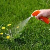 Погляд з середини. Виробництво засобів захисту рослин ALFA Smart Agro