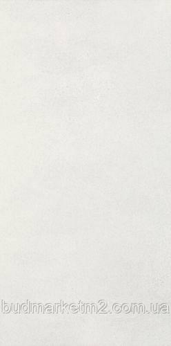 Плитка Paradyz Taiga Silver Ściana Rekt. 29.5 x 59.5