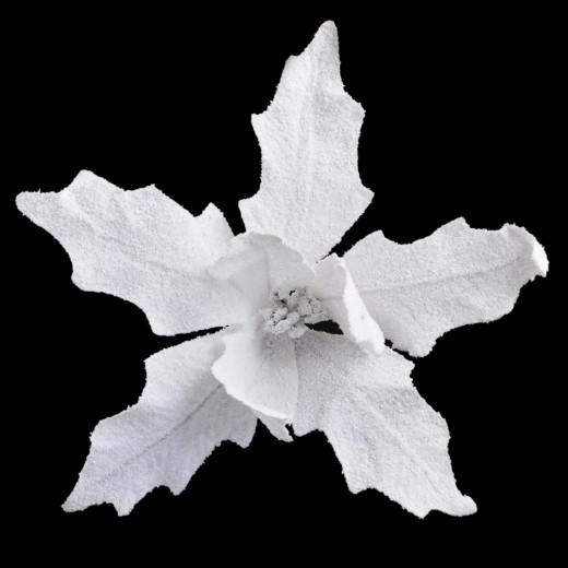 Пуансеттия , 26 см з кліпом, біла