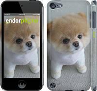 "Чехол на iPod Touch 5 Boo 3 ""891c-35"""