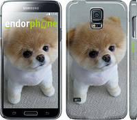 """Чехол на Samsung Galaxy S5 g900h Boo 3 """"891c-24"""""""