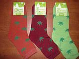 Махровые женские носки Топ-тап. Р. 23- 25. Житомир. Конопля., фото 4