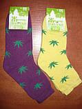 Махровые женские носки Топ-тап. Р. 23- 25. Житомир. Конопля., фото 6