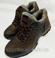 Мужские зимние кожаные ботинки Ecco Natural Motion